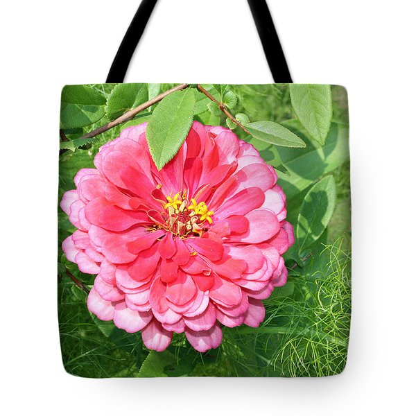 Tote Bag featuring the photograph Pink Zinnia With Ferns by Ellen Tully