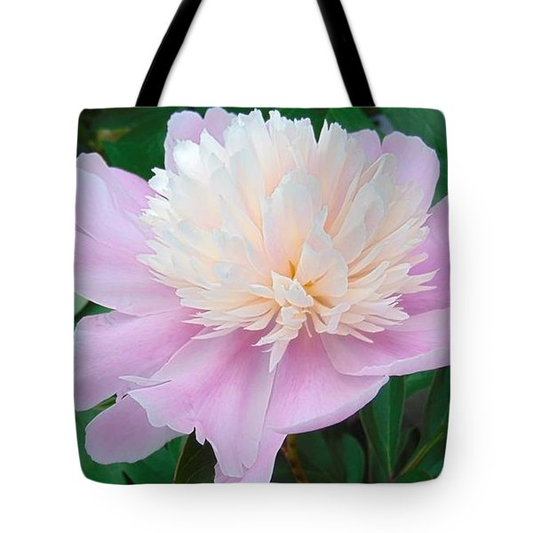 Pinkness Tote Bag