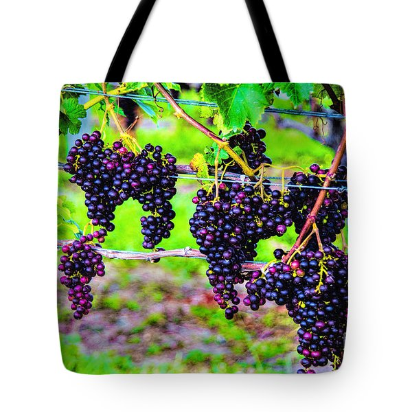 Pinot Noir Grapes Tote Bag
