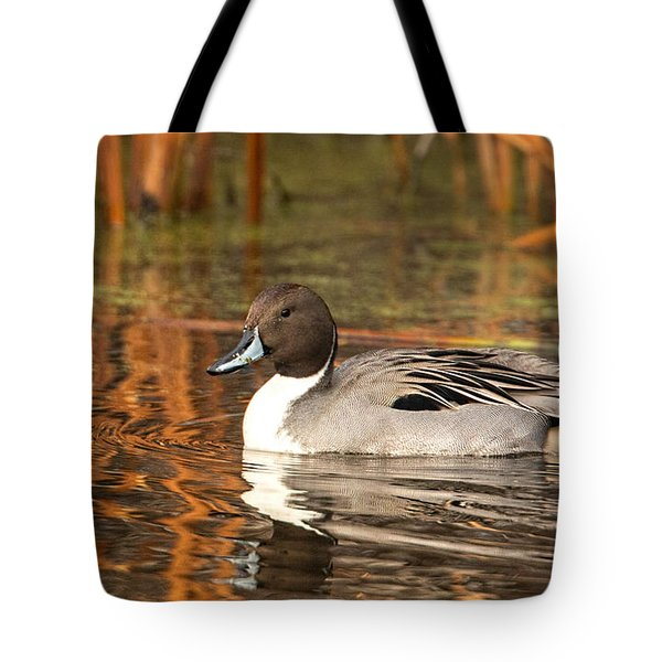 Pintail Tote Bag by Kelly Marquardt