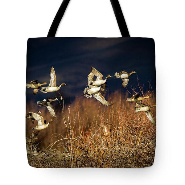 Pintails And Wigeons Tote Bag