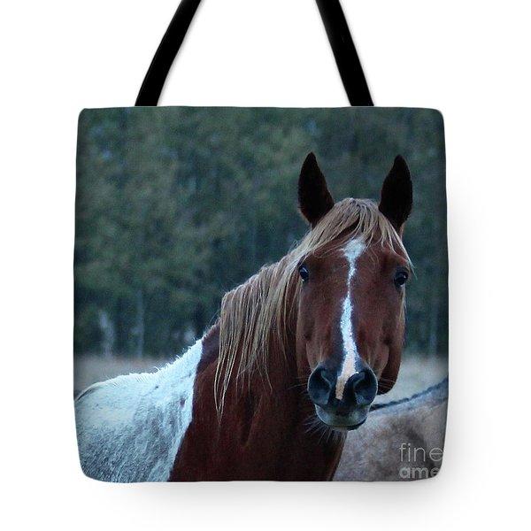 Pinto Tote Bag