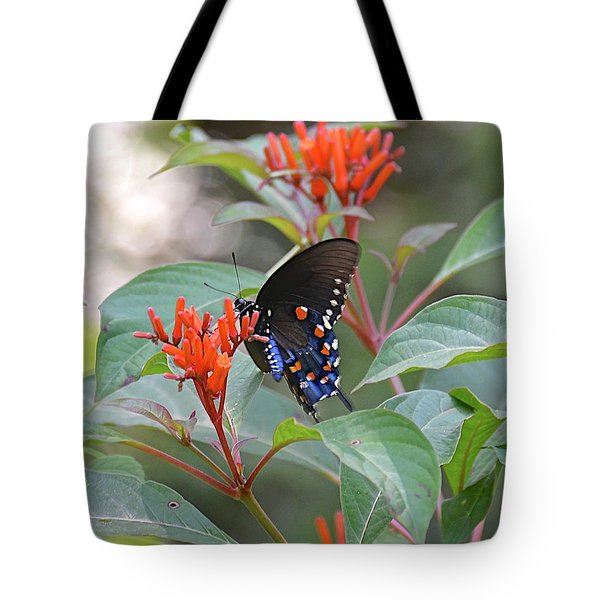 Pipevine Swallowtail Butterfly On Firebush Tote Bag