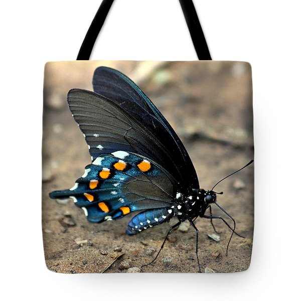 Pipevine Swallowtail Close-up Tote Bag