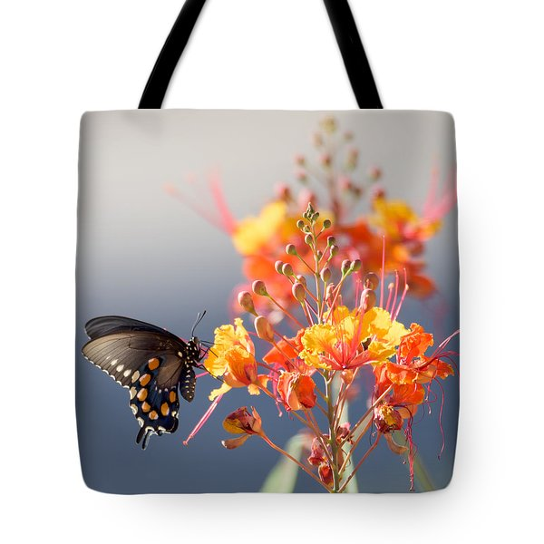 Pipevine Swallowtail Tote Bag