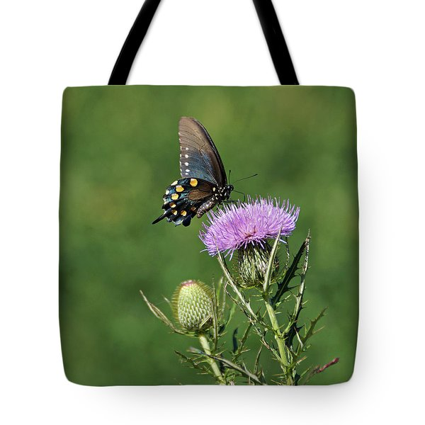 Tote Bag featuring the photograph Pipevine Swallowtail by Sandy Keeton