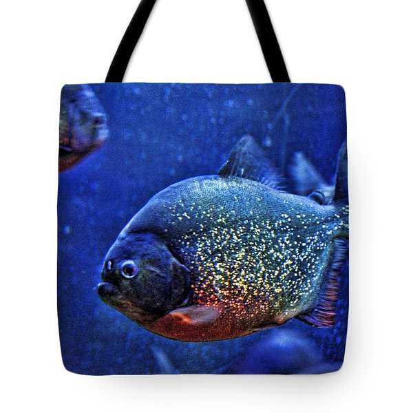 Tote Bag featuring the photograph Piranha Blue by Jan Amiss Photography