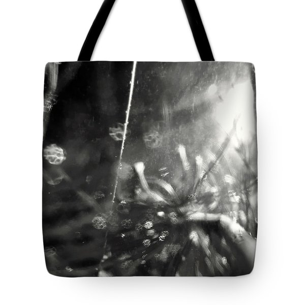Pirateship Wreck Tote Bag