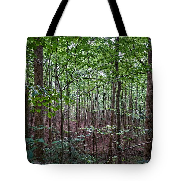 Pisgah Forest Tote Bag