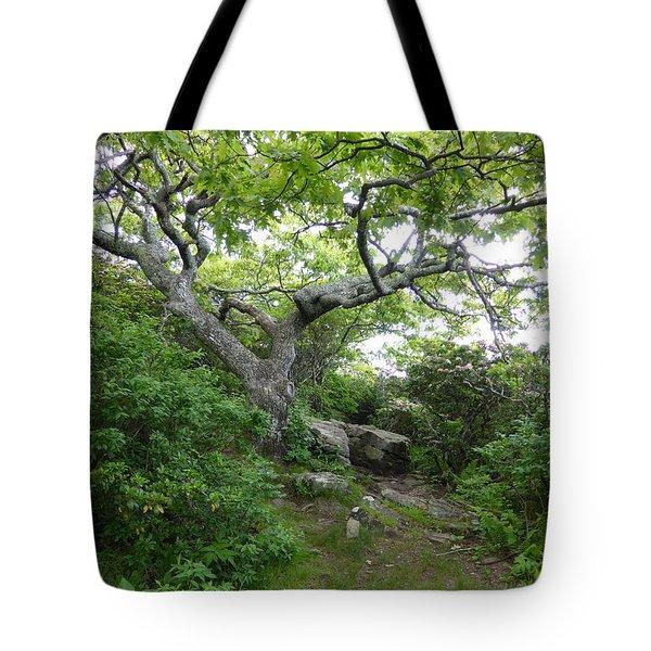 Pisgah Trail Magic Tote Bag