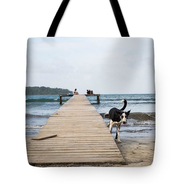Pisscture Perfect Tote Bag