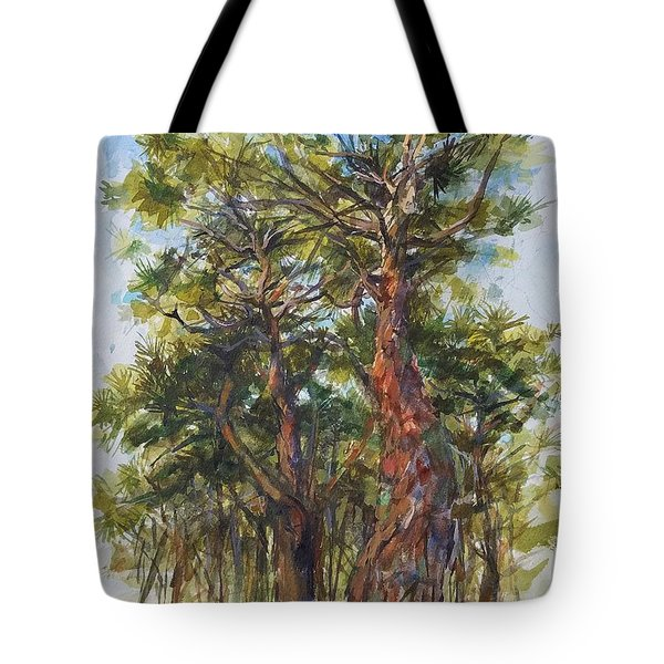 Pitch Pines, Cape Cod Tote Bag by Peter Salwen