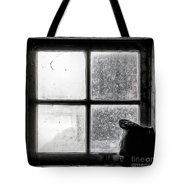 Pitcher In The Window Tote Bag