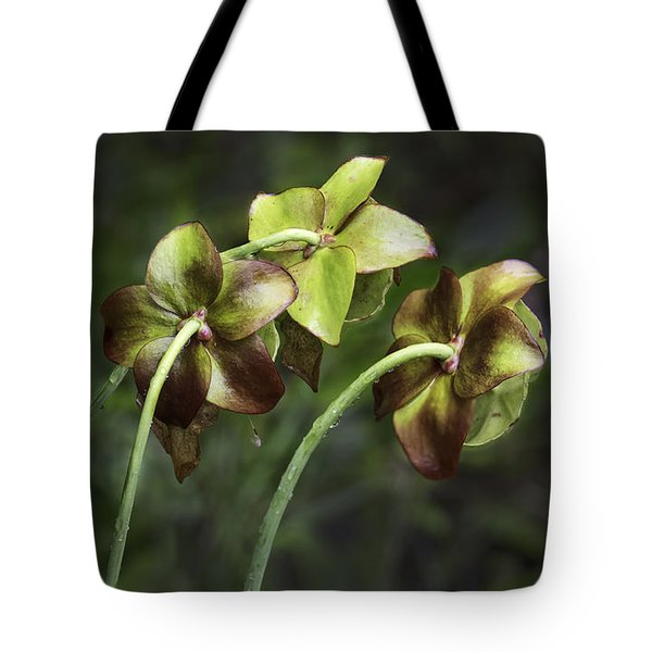 Pitcher Plant 09 Tote Bag