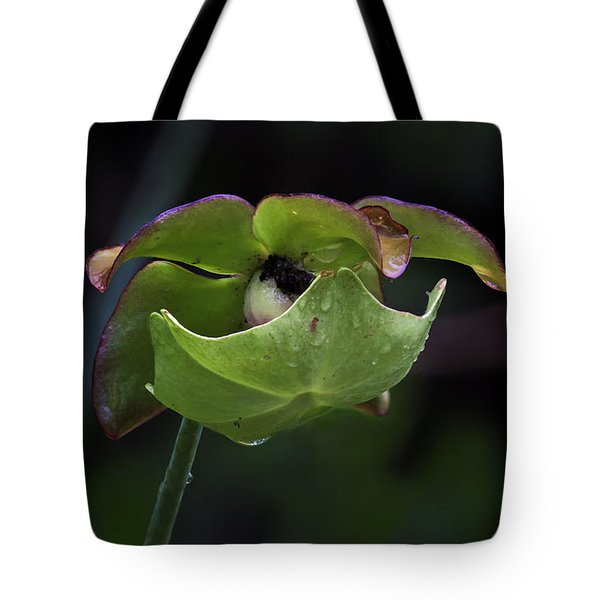 Pitcher Plant 10 Tote Bag