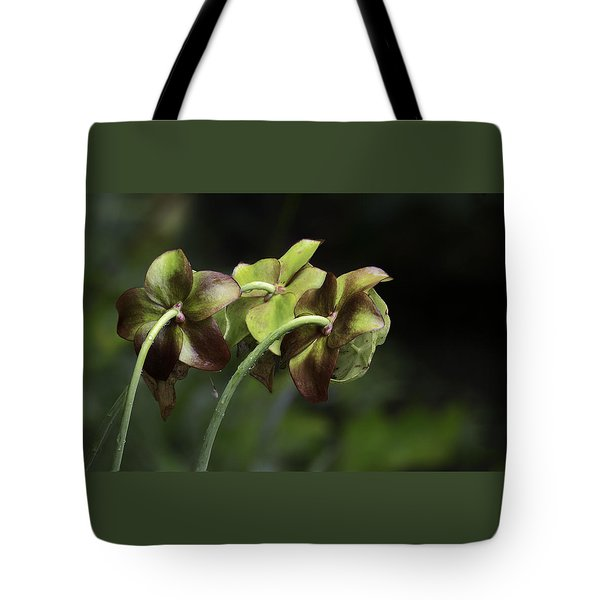Pitcher Plant 11 Tote Bag
