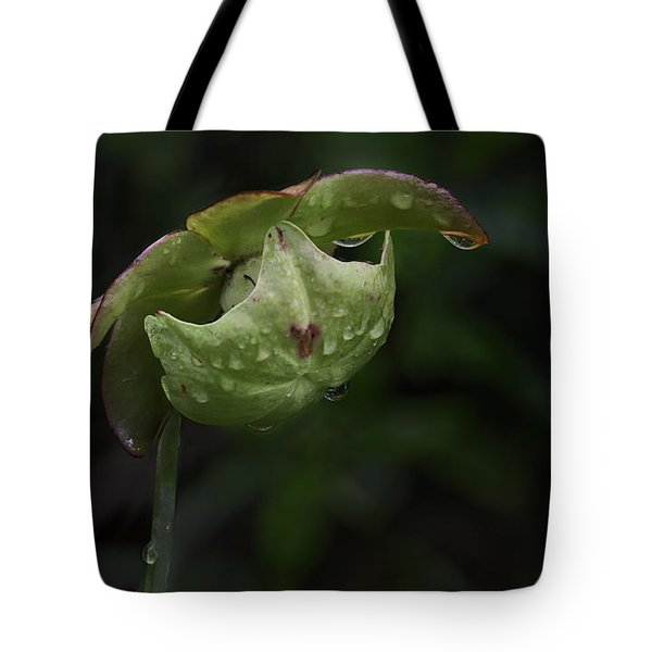 Pitcher Plant 12 Tote Bag