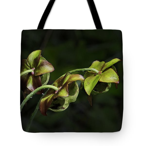 Pitcher Plant 13 Tote Bag