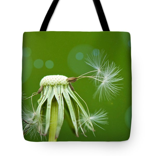 Pixie Wishes Tote Bag by Lisa Knechtel
