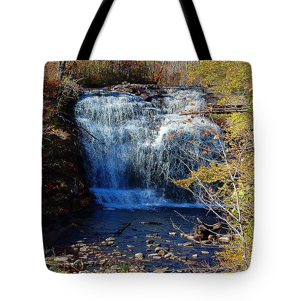 Pixley Falls State Park Tote Bag by Diane E Berry