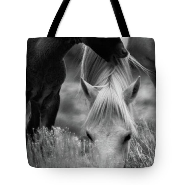Tote Bag featuring the photograph Placitas 2 by Catherine Sobredo