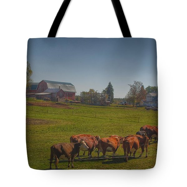 1014 - Plain Road Farm And Cows I Tote Bag