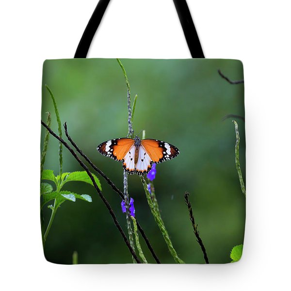 Plain Tiger Butterfly Tote Bag by David Gn