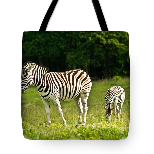 Plains Zebra 1 Tote Bag by Douglas Barnett