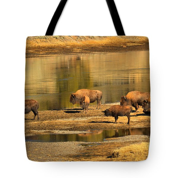 Tote Bag featuring the photograph Planning To Cross by Adam Jewell