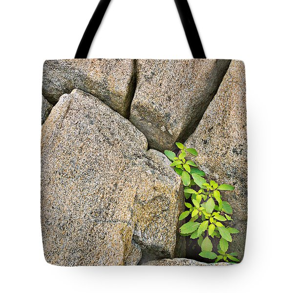 Plant In Granite Crevice Abstract Tote Bag