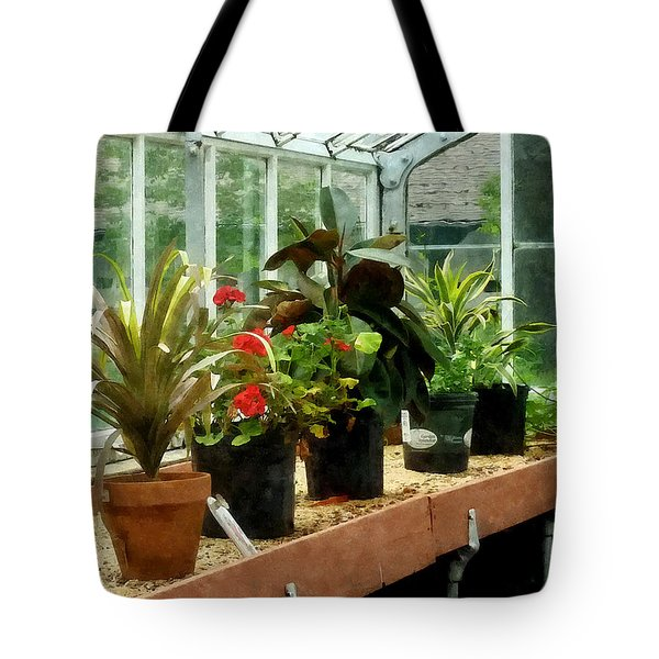 Plants In Greenhouse Tote Bag by Susan Savad