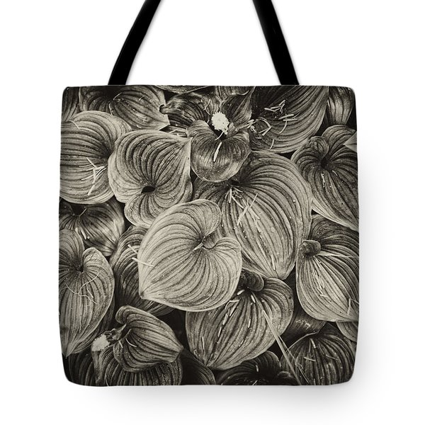 Tote Bag featuring the photograph False Lily Of The Valley by Hugh Smith