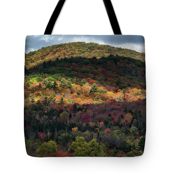 Play Of Light And Shadows. Tote Bag