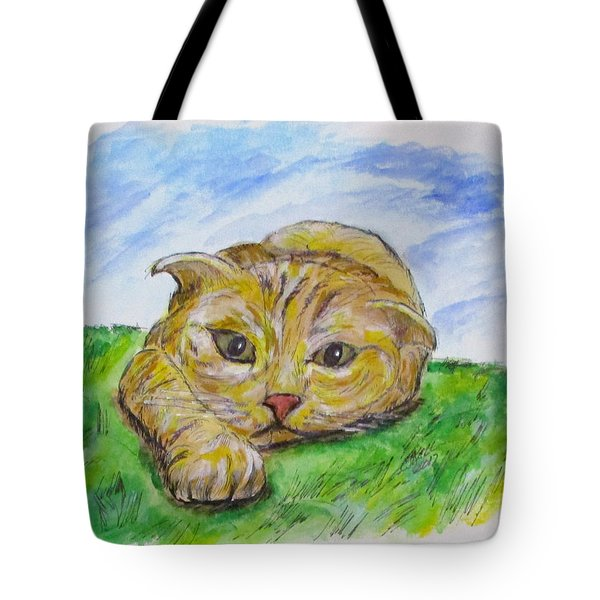 Play With Me Tote Bag by Clyde J Kell