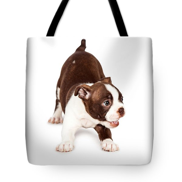 Playful Boston Terrier Puppy Dog Tote Bag