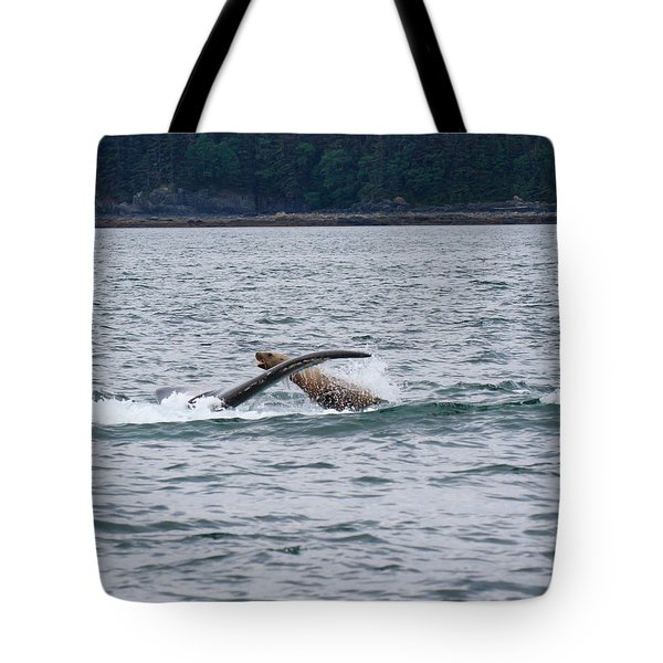 Playful Steller Sea Lion And Humpback Whale Tote Bag by Allan Levin