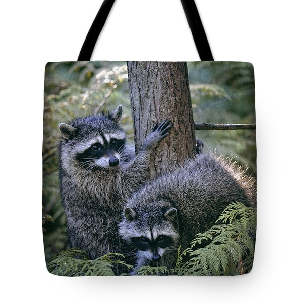 Playing In The Woods Tote Bag
