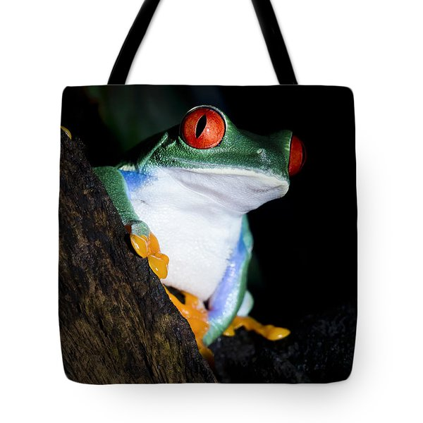 Tote Bag featuring the photograph Playing It Cool by Windy Corduroy