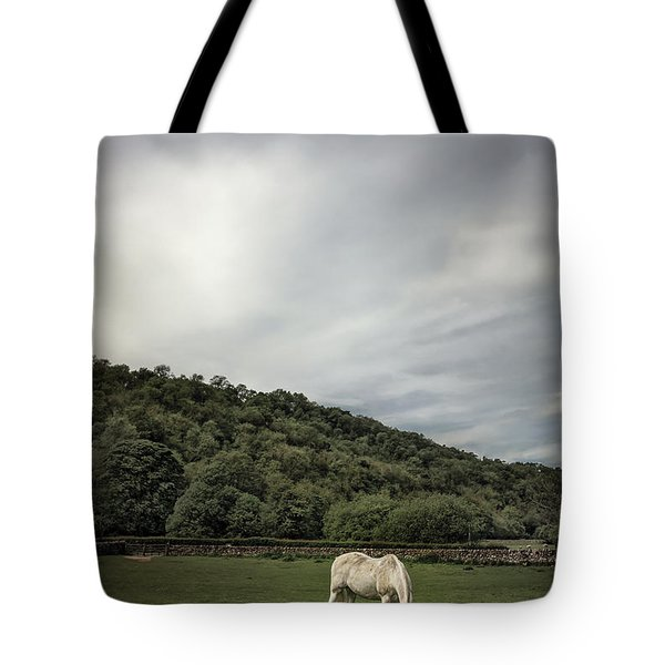 Pleasant Valley Sunday Tote Bag