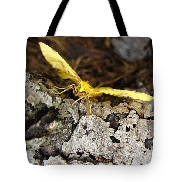 Pleased To Meet You Tote Bag by Peggy King