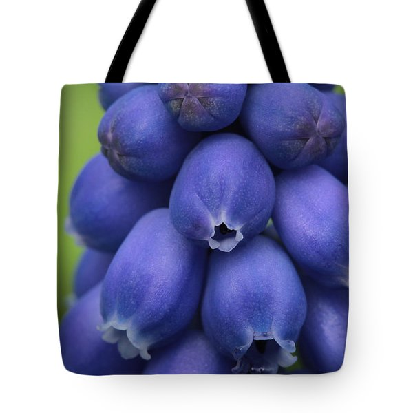 Pleasingly Plump Tote Bag