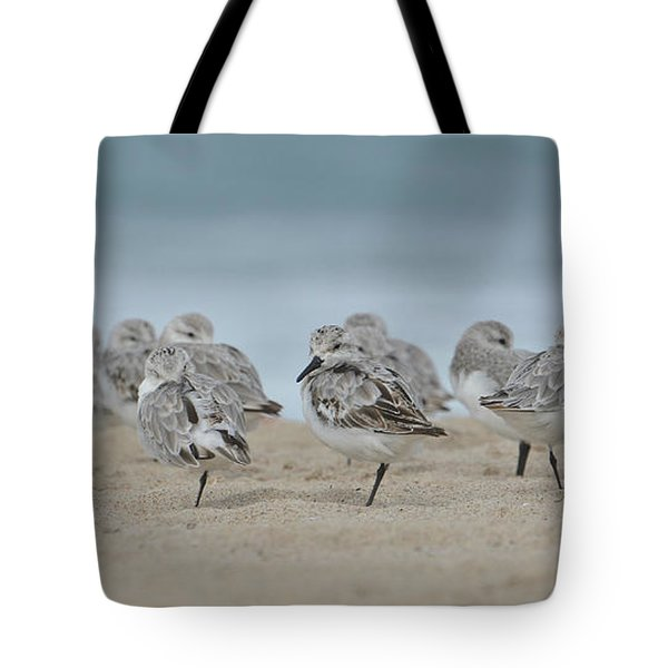 Plover Colony Tote Bag