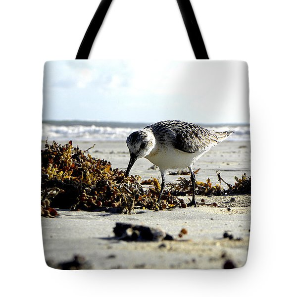 Plover On Daytona Beach Tote Bag by Chris Mercer