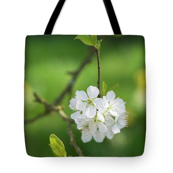 Plum Blossom Tote Bag by Tim Gainey