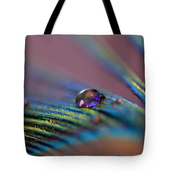 Plum Heart Tote Bag by Lisa Knechtel