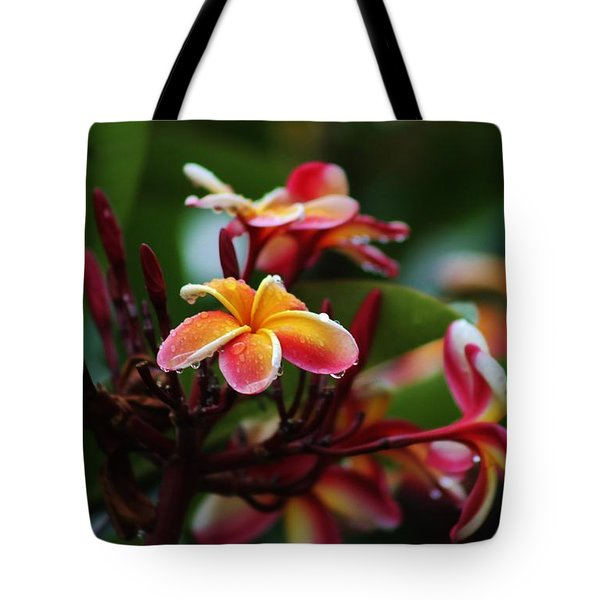 Tote Bag featuring the photograph Plumaria After The Rain by Craig Wood