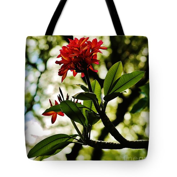 Tote Bag featuring the photograph Plumaria Morning by Craig Wood
