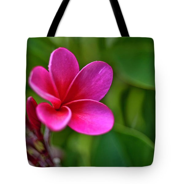 Plumeria - Royal Hawaiian Tote Bag