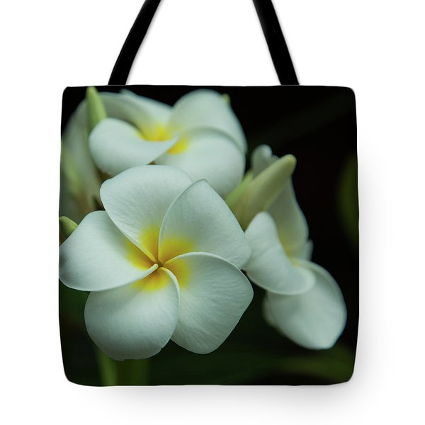 Tote Bag featuring the photograph Plumeria by Angie Vogel