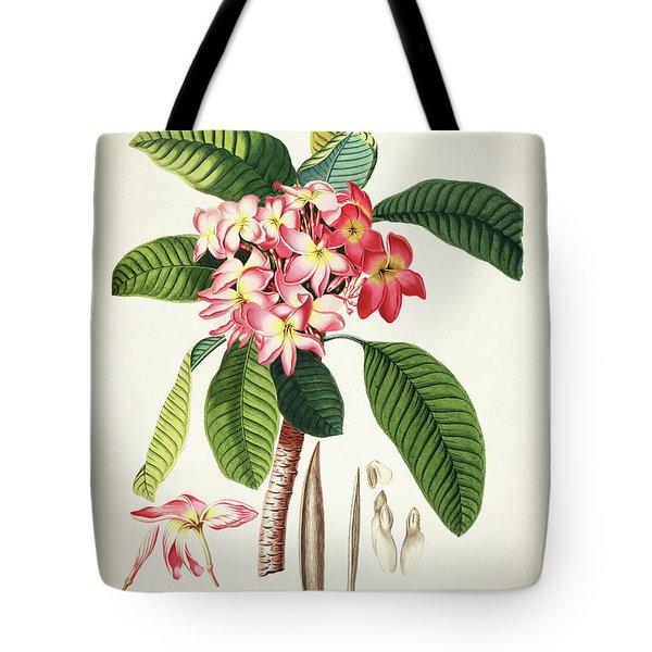 Plumeria Botanical Print Tote Bag